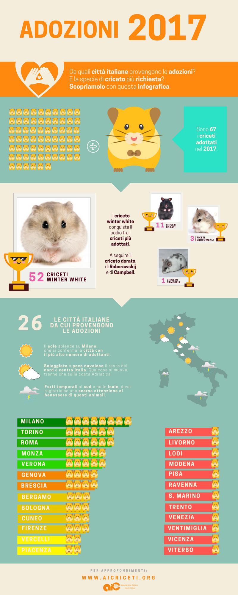 Da quali città italiane provengono le adozioni? E la specie di criceto più richiesta? Scopriamolo con questa infografica.